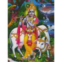 Poster Krishna